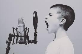 Pannello Fonoassorbente Microfono Neewer Recensioni